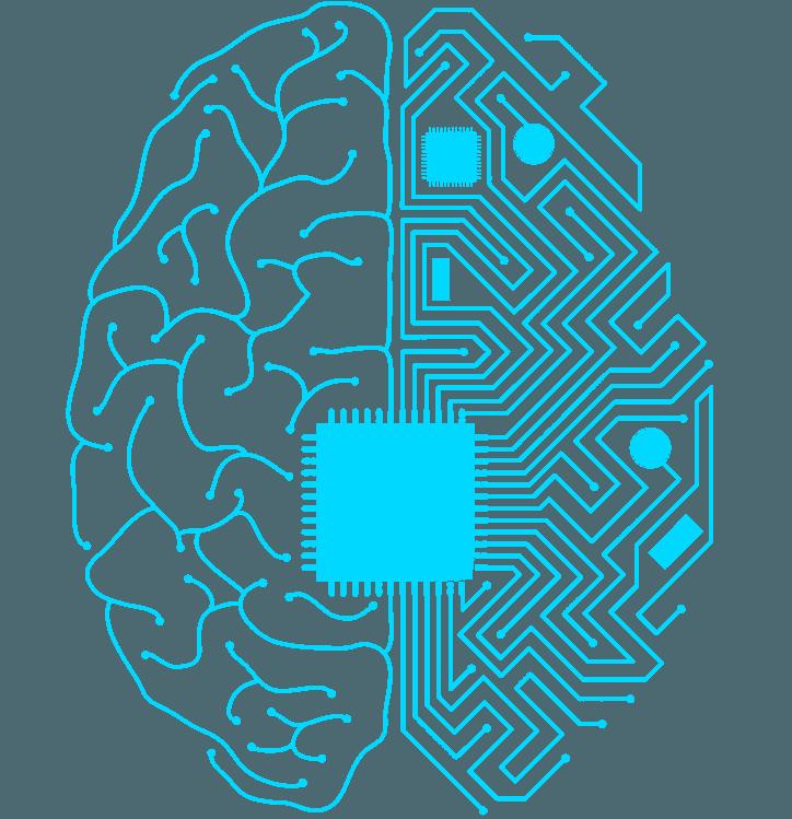 Klasyfikacja adresów URL - BTC Machine Learning